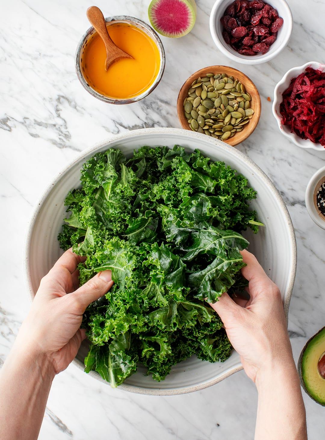 The Origin India Kale Salad