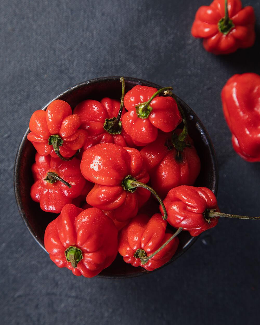 Habanero Red Chilli Mexico
